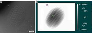 (a) SEM image and (b) WLI map for 12N and 45min test in a coated sample.