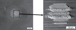 SEM images of fretting track in coated sample for 12N and 1h test.