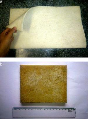 General macroscopic aspect of the (a) curaua fiber fabric and (b) its epoxy composite.