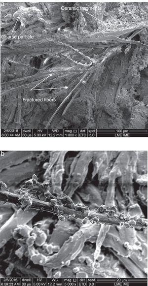 Fracture micrographs of the impacted curaua MAS: (a) 1000× and (b) 5000×.