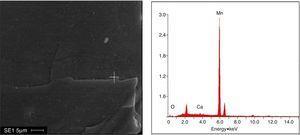 SEM image and EDS spectrum of rhodochrosite (rhodochrosite+Ca2++Na2CO3).