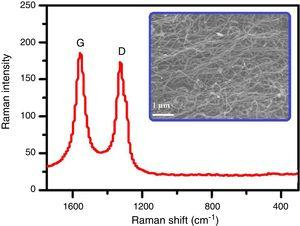 Raman spectrum of MWCNTs used for comparison in this work. The figure in the inset shows the SEM image of this nanomaterial.