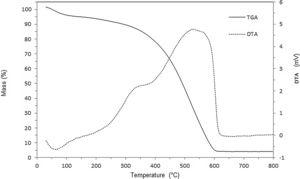 Thermogravimetric and differential thermal analysis of humic molecule.