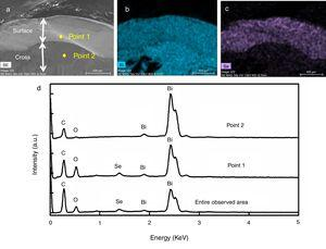 FE-SEM observations of the metal product from the treatment of test metal 1: (a) secondary electron image and corresponding elemental mapping images of (b) Bi and (c) Se along with (d) EDS spectra.