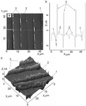 (a) Niobium barrier around fibers in the conducting matrix within the cross section of the defect-free area; (b) profilogram of this domain; (c) 3D image.