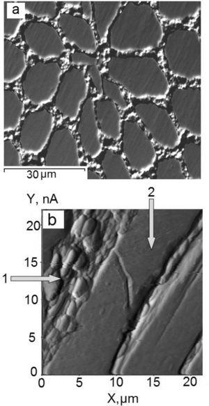 (a) Plastic deformation localized in the intermediate layer of Nb-Ti fibers in the cross section and (b) failure of Nb-Ti fiber in the longitudinal section of superconducting cable: 1 – copper matrix, 2 – Nb-Ti filament.