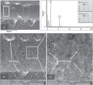 SEM images of the scratch track and the composition analysis of the track after adhesion failure.