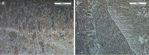 Fusion zone with columnar grains (a) and network of AF and FS(A) microstructures (b).
