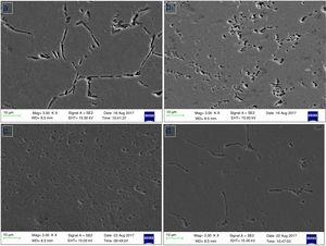 Representative SEM micrographs of the: (a) unreinforced Al-Mg-Si alloy, and the Al-Mg-Si based composites reinforced with (b) 6wt.% steel particles, (c) 8wt.% steel particles, and (d) 8wt.% SiC particles.