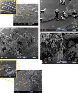 SEM tensile fractograph of (a) plain polyester, (b) 10, (c) 20, (d) 30 and (e) 40vol% mallow fabric polyester matrix composite.