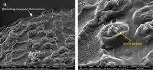 SEM showing the presence of some protrusions with silicon-rich particles in the surface and the debonding interface.