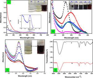 (A) UV–vis spectra of (curve a) plant extract, (curve b) HAuCl4 and (curve c) AuNPs. (B) Effect of variation of concentration of HAuCl4 during the formation of AuNPs. (C) Time-dependent UV–vis spectra shows the gradual formation of AuNPs. (D) FTIR spectrum of the Camellia japonica leaf extract (curve a) and the synthesized AuNPs (curve b).