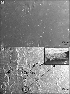 SEM micrographs showing the surface morphology of (a) Almilled-0.5 wt% CNT nanocomposite and (b) Almilled-1.0 wt% CNT nanocomposite post compression test (the inset shows the agglomeration of CNTs within the cracks).