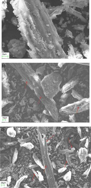 SEM images of the piassava fiber residues: (a) WFR, (b) TFR50 and (c) bundles of microfibrils dissociated from the TRF50 sample.