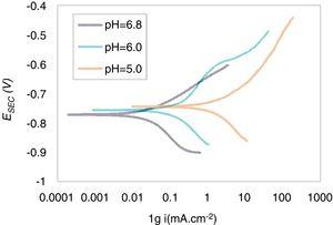 Potentiodynamic polarization curves of FG20 steel in different solutions.