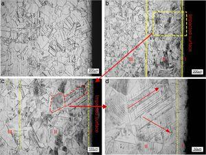 Optical microstructure of cross-section of AISI304 stainless steel samples before and after explosive treatments (a) microstructure of annealed sample&#59; (b) microstructure of cross-section after explosive impact&#59; (c) microstructure of deformation bands&#59; (d) microstructure near surface.