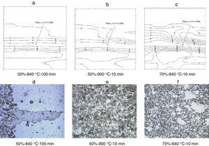 CODF of Class 1 and the respective photomicrographs of the samples.