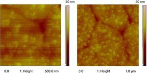 AFM (topography) images of BDFO thin film of (a) 500nm×500nm, (b) 1μm×1μm scan size and scan height of 30nm.