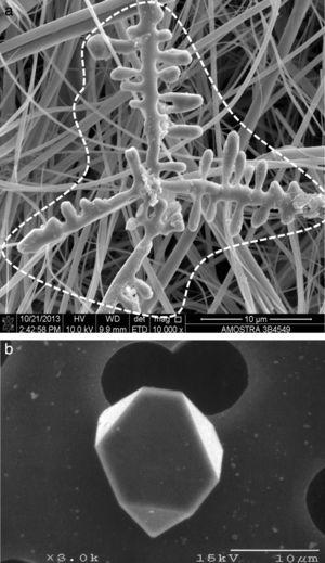 Some examples of alumina inclusion morphologies. Inclusions extracted by dissolving the as-cast matrix. In (a) the dendritic structure is circles with a dashed line [45]. The fibers of the filter used to retain the inclusions during the dissolution process are visible in the background. (b) Polygonal alumina inclusion, courtesy of A. Mitchell, UBC [12].