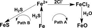 The reaction network of carbon steel dissolution in NH4Cl–Na2S2O3 solutions.