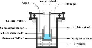 Schematic diagram of electrolysis cell.