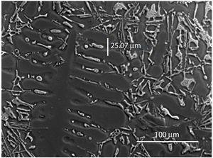 Track adopted for microsegregation profiles along tertiary adjacent dendritic arms of Al–9wt%Si–2wt%Cu alloy.
