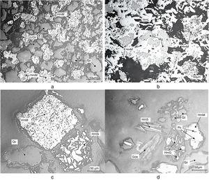 Photomicrographs of (a) quartz (Qz) and martitic hematite (HmM) (2380–1400μm)&#59; (b) intergrowth grains of martitic hematite (HmM) and magnetite (Mg) with pores (Po) of several sizes (dark regions) and lamellar hematite (HmL) (1380–1400μm)&#59; (c) martitic hematite (HmM) with magnetite habit, sinuous hematite (HmSi) and quartz particle (Qz) (295–108μm)&#59; (d) martitic hematite (HmM), specular hematite (HmS), granular hematite (HmG), quartz (Qz) and goethite (Goe) (105–74μm).