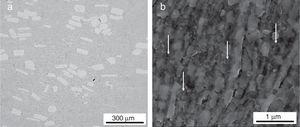 (a) SEM image taken on the mechanically polished surface of the sintered sample 316L-3CNT. (b) SEM image with a higher magnification taken on the electropolished surface of 316L-3CNT. The white arrows indicate nanocrystalline volumes which were not evaluated by EBSD due to the very small grain size. These regions are black in the EBSD images of Fig. 4.