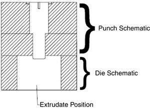 2D schematic of the extrudate flow.