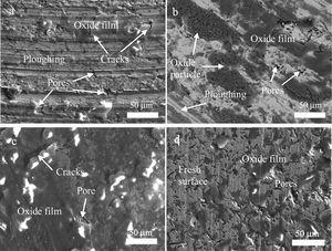 SEM images of the worn surfaces of NC and CG with and without applied magnetic field: (a) CG, 0kA/m; (b) CG, 2.23kA/m; (c) NC, 0kA/m; (d) NC, 2.23kA/m.