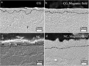 SEM images of the cross-section of NC and CG under absence of and applied magnetic field: (a) CG, 0kA/m; (b) CG, 2.23kA/m; (c) NC, 0kA/m; (d) NC, 2.23kA/m.