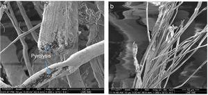 SEM micrographs of the fracture surface of: (a) curaua fibers in the mat irradiated with 300h, showing regions degraded by pyrolysis and (b) aramid fibers in the fabric irradiated with 600h.