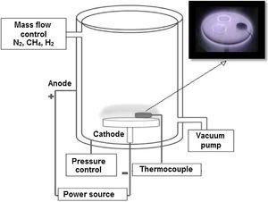 Schematic model of the pulsed plasma reactor used in the nitrocarburizing experiments.