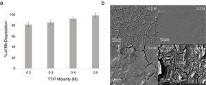 Percentage of MB degradation for UV-light spectrum and SEM images of TiO2 thin film at different TTiP molarity.