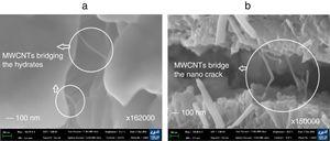 SEM image of (a) MWCNTs bridging hydrates, (b) evidence showing MWCNTs bridging a nano-crack.