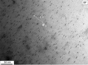 TEM-BF micrograph of EZ33A thixo-cast after T6 heat treatment (solutioned at 500°C for 6h and aged at 190°C for 33h).