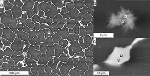 (a) SEM-BSE microstructure of EZ33A ingot, (b) Zr enriched precipitations identified in the grains, and (c) eutectic in the interglobular area.