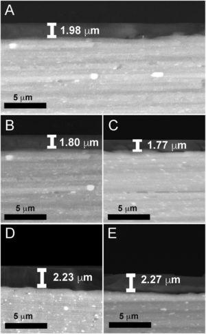Scanning electron micrographs showing cross-sections of the coated AA2024-T3 samples: (A) Hy&#59; (B) Hy/AgNPs1&#59; (C) Hy/AgNPs2&#59; (D) Hy/AgNPs3&#59; (E) Hy/SiO2NPs.