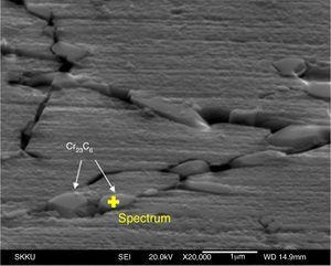 SEM images of the morphology of intragranular carbides.