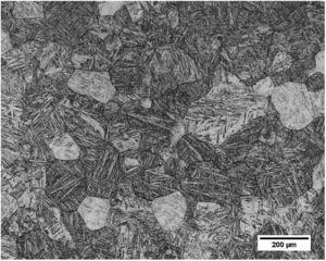 Optical micrographs of the solution treated and water quenched (ST/WQ) TNTZ alloy.