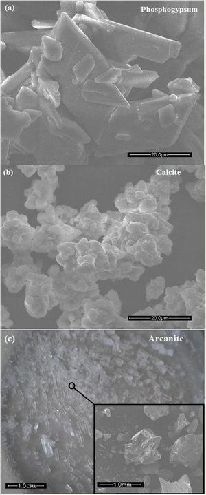 SEM images of PG (a), calcite P10 (b) and arcanite F10 (c).