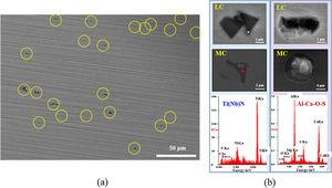 Nature of the 2nd phase particles in tested steels analyzed by (a) FE-SEM and (b) EDS.