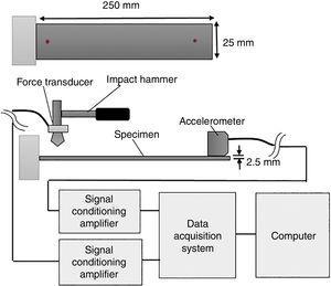 Experimental set up of free vibration measurement.