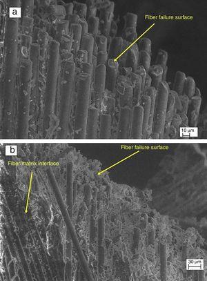 (a, b) Microstructure image of failure surface of sub-zero temperature aged specimen.