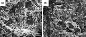 SEM fractograph of fractured longitudinal (a) and transverse (b) impact specimens in Steel No.1 after quenching and tempering.