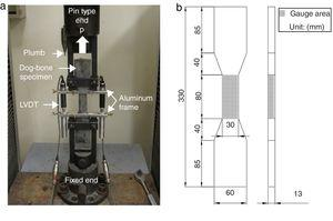 Direct tensile test setup: (a) picture and (b) details of specimen geometry.