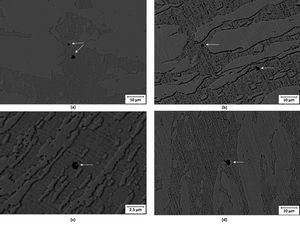Micrographs obtained by SEM after CPT to current density values limited to 10−4A/cm2 showing: (a) base metal (BM), (b) TMAZ-RS, (c) stir zone (SZ) and (d) TMAZ-AS. Small pits are formed in the ferrite phase or at the ferrite/austenite interface.
