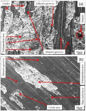 Worn surface of the composites with 5wt.% (a) coarse and (b) fine garnet particle reinforced at 49N load.