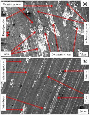 Worn surface of the composites with 10wt.% (a) coarse and (b) fine garnet particle reinforced at 49N load.