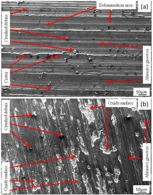 Worn surface of the composites with 15wt.% (a) coarse and (b) fine garnet particle reinforced at 49N load.